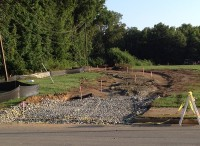 Cannon Creek Progress